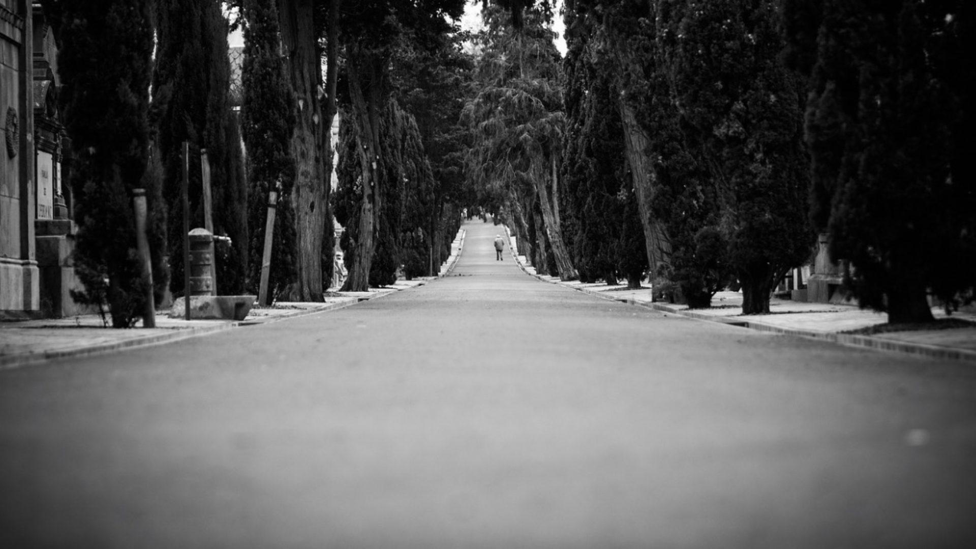 Mulherin Lane